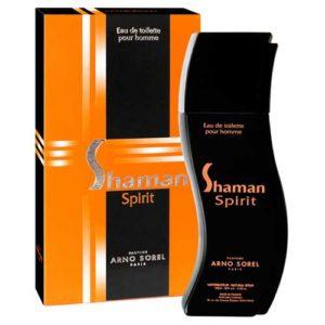 Arno Sorel Туалетная вода для мужчин Shaman Spirit (Шаман спирит), 100 мл 8