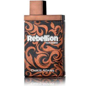 Chris Adams Туалетная вода для мужчин Rebellion, 100 мл 34
